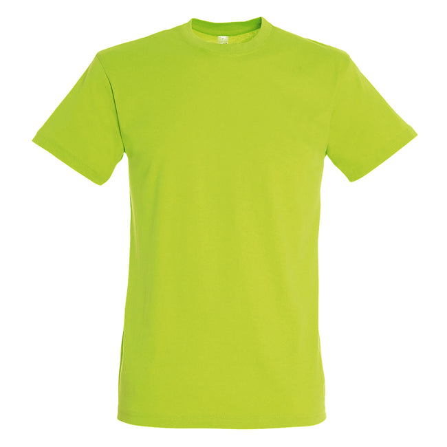 Apple Green - Side - SOLS Mens Regent Short Sleeve T-Shirt
