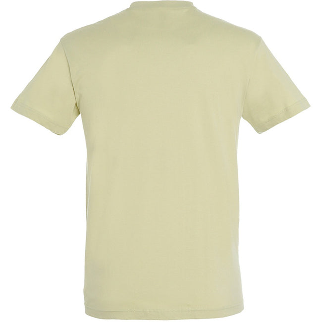 Green Sage - Back - SOLS Mens Regent Short Sleeve T-Shirt