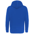Royal Blue - Back - AWDis Just Hoods Womens-Ladies Girlie College Pullover Hoodie