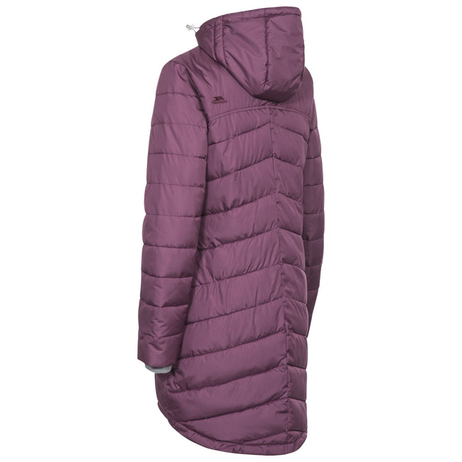 Blackberry - Back - Trespass Womens-Ladies Homely Padded Jacket