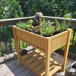Everything About the Raised Garden Beds from Quictent