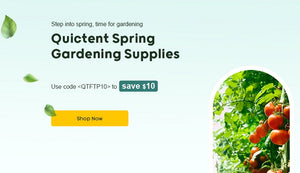 Everything You Should Know for Spring Transplanting 2021