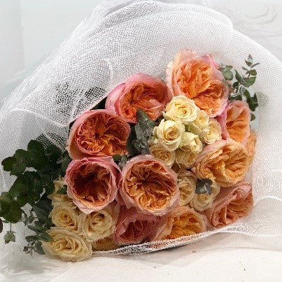 The Garden Rose Bouquet is the perfect bouquet full of Garden Roses for all occasions, Birthday, Happy Birthday, Anniversary, Sympathy, New baby, Thank-you, Welcome Home, All the Best and can be delivered to any Melbourne Suburbs, Melbourne City, Bayside suburbs and Port Melbourne