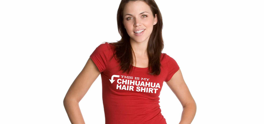 This is my Chihuahua hair shirt