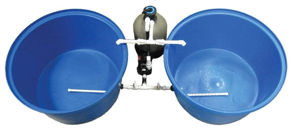 Complete Fish Farm System - Smith Creek Fish Farm
