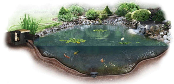 Pro-Series Large Pond Kit 24'x24', 24'x34', 34'x34' - Smith Creek Fish Farm