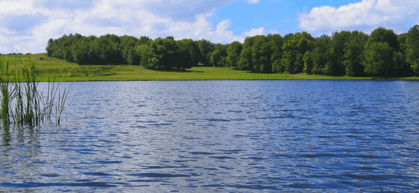 AquaShadow® Pond and Lake Dye from Applied Biochemist - Smith Creek Fish Farm