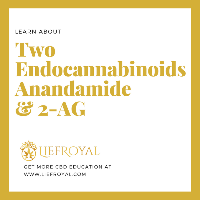Two Endocannabinoids - Anandamide (AEA) And 2-AG