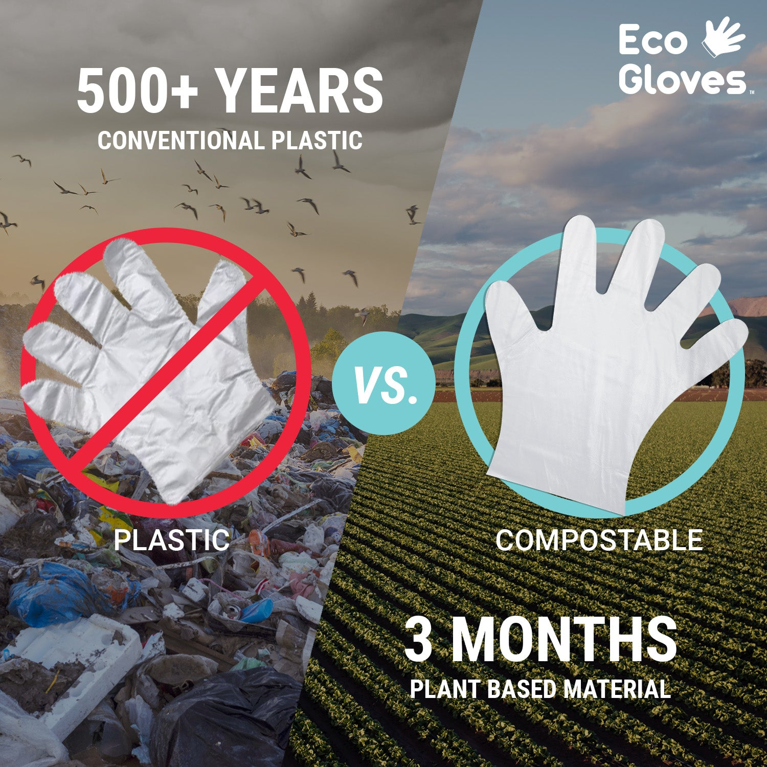 Are Disposable Gloves Biodegradable