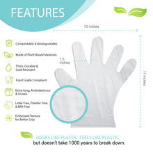 Load image into Gallery viewer, Individually Packaged Gloves with 24 Packets Sample