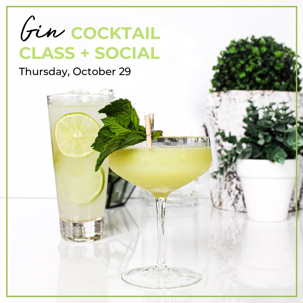 Gin Cocktail Class Parent Social - November 26, 2020