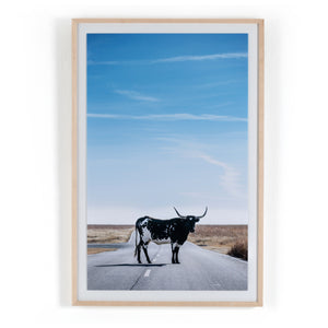 Longhorn Crossing by Teague Collection