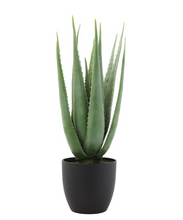 Load image into Gallery viewer, Faux Aloe Plant in Pot