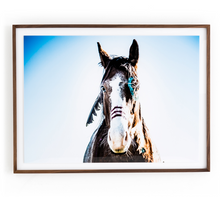 Load image into Gallery viewer, War Horse