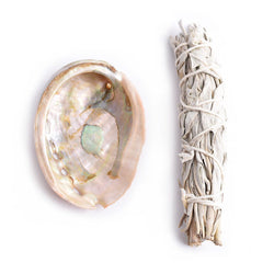 SACRED WHITE SAGE AND ABALONE SHELL SET