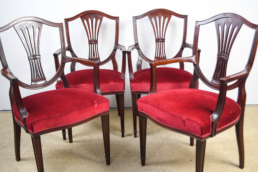 Four Hepplewhite Style Carver Chairs - Greystones Antiques