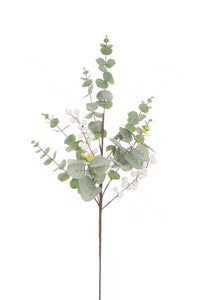 Eucalyptus White Berry Spray64