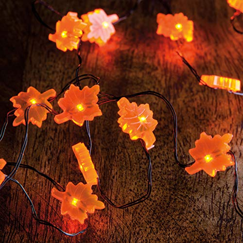 Primitives by Kathy String 20 Lights, 42-Inch, Leaf