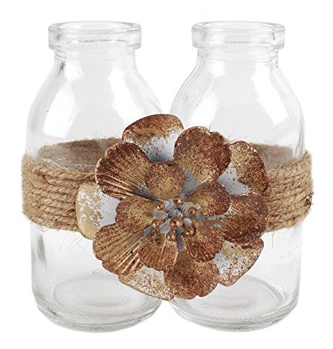 Blossom Bucket Two Glass Bottles W/Brown Flower Home décor