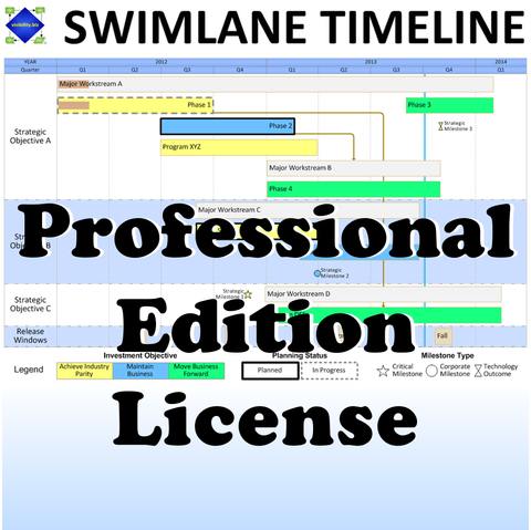 Swimlane Timeline Professional Edition License with 2 Years of Version Upgrades