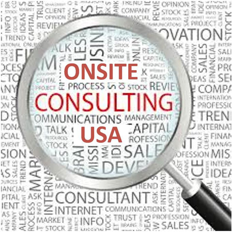 USA Onsite Swimlane Timeline Training & Consulting
