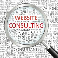 Web-based Education & Consulting Services
