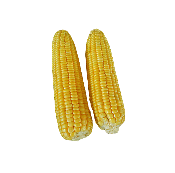Yellow Corn on Cob (500g)