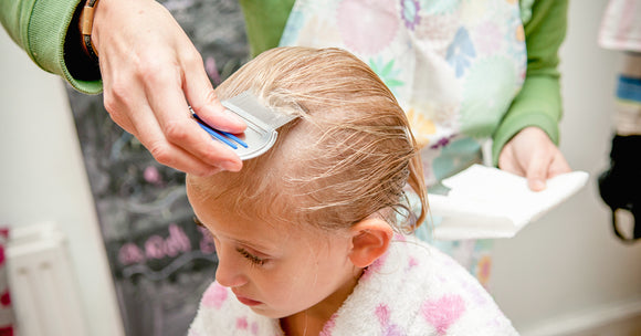 Lice Treatments