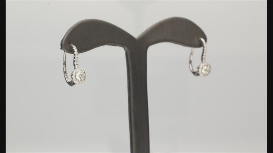 14 Karat White Gold Lever Back Earrings