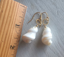 Load image into Gallery viewer, Hawaiian Trochus Mother of Pearl Earrings, metal choices