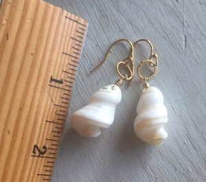 Hawaiian Trochus Mother of Pearl Earrings, metal choices