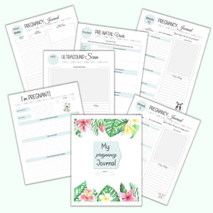 Printable Pregnancy Journal & Memory Book