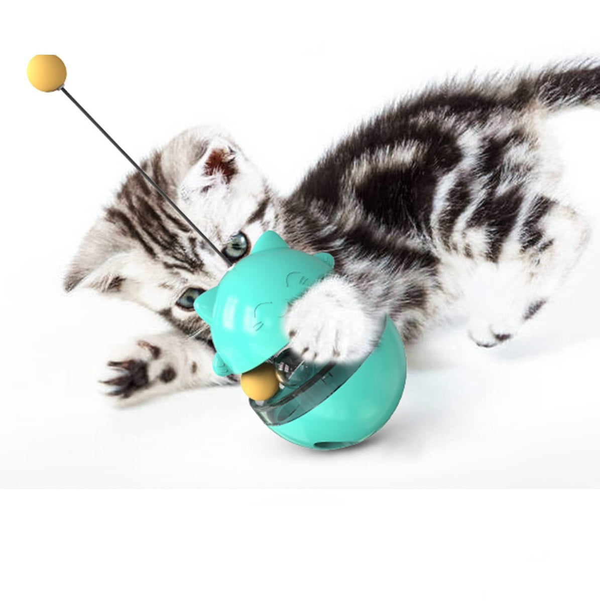 40%OFF-Roly-poly cat ball
