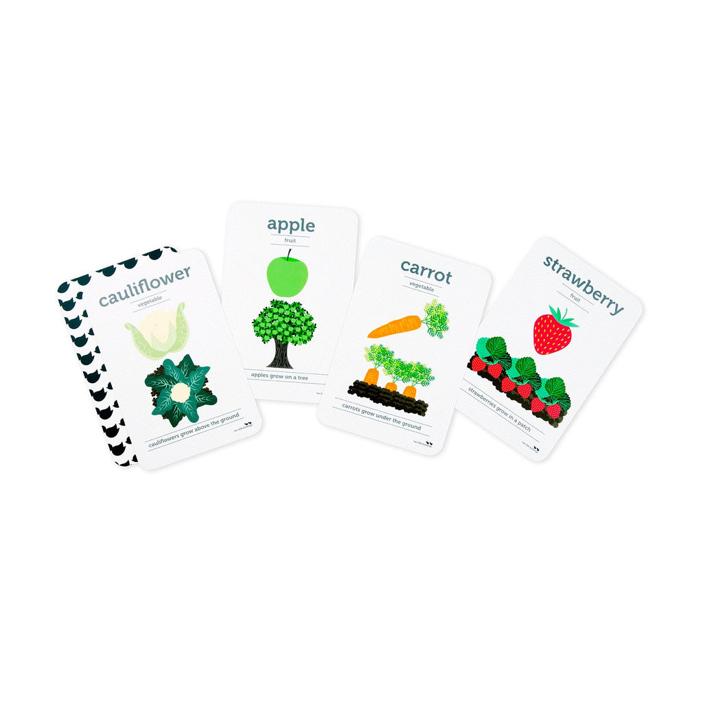 Fruit and Vegetables Flash Cards - Dimple and Dot