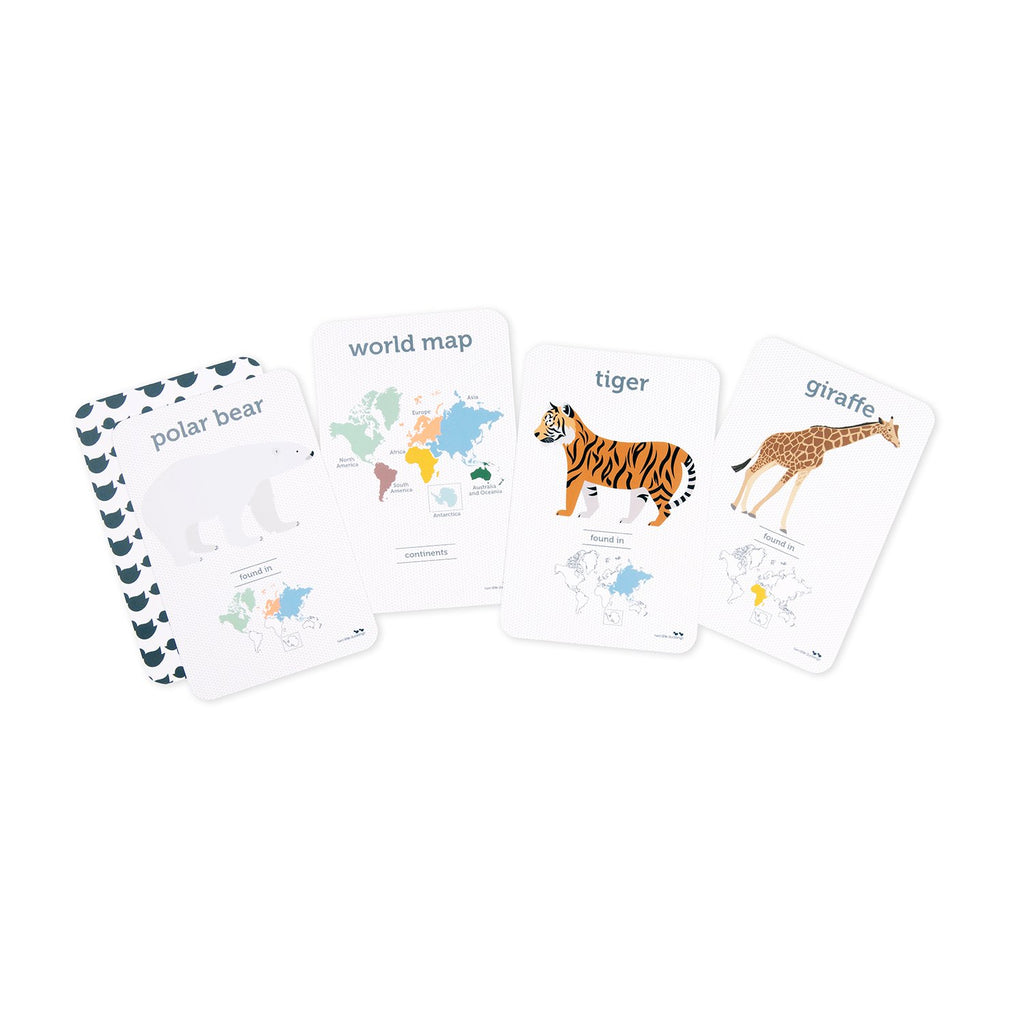 World Animals Flash Cards - Dimple and Dot