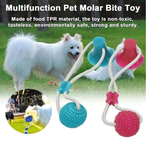 Snowing Deals - Dog Molar Bite Toy - Multi function Toy