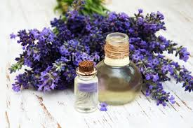 The Best Deals Online - Lavender Oil