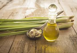 The Best Deals Online - Lemongrass Oil