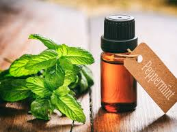 The Best Deals Online - Peppermint Oil