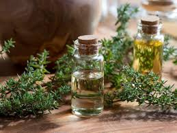 The Best Deals Online - Thyme Oil
