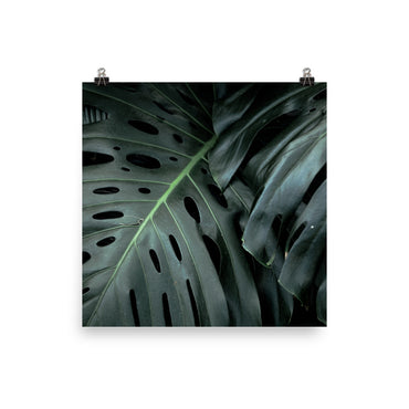 Customizable 16x16 Premium Luster Photo Paper Poster (In)