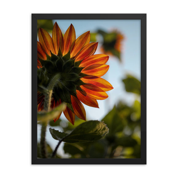 Customizable Enhanced Matte 18x24 Paper Framed Poster (in)