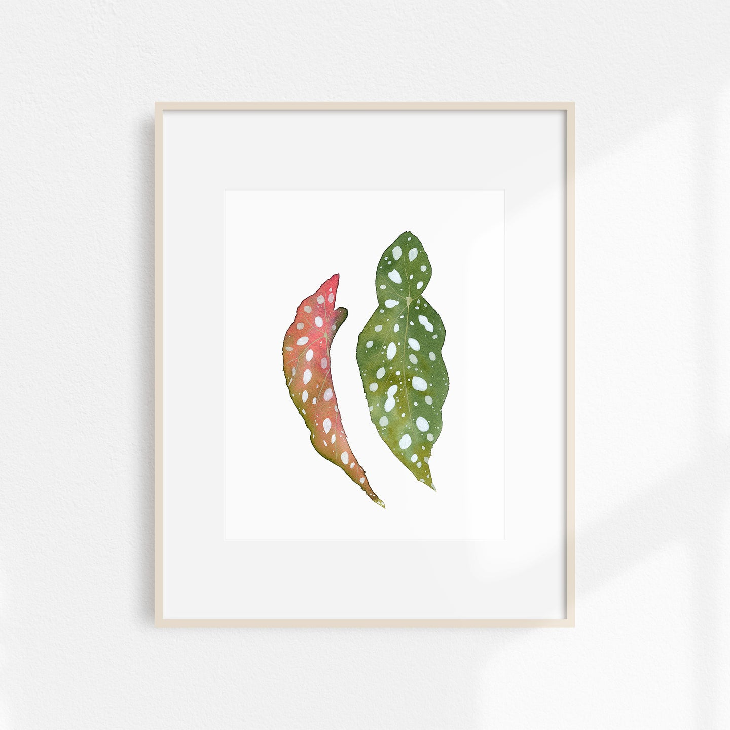 Watercolor Begonia Print
