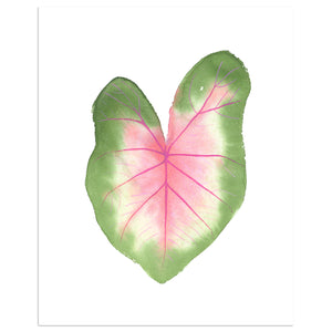 Watercolor Houseplant Print