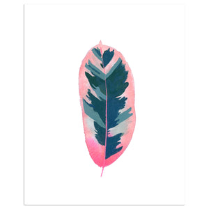 Watercolor Rubber Tree Print