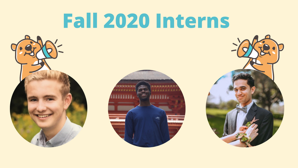 Meet the Fall 2020 Interns