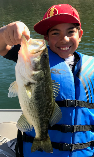 Castaic Fishing and Lake Conditions – 11/16/2019
