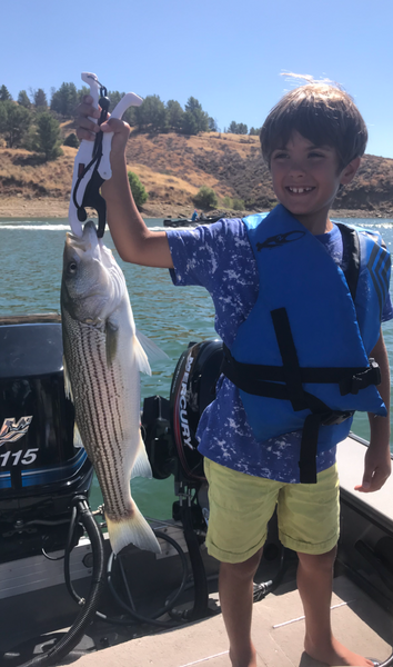 Castaic Fishing and Lake Conditions – 09/07/2019