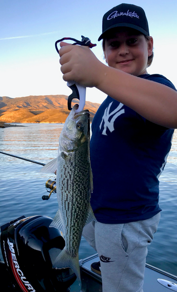 Castaic Fishing and Lake Conditions – 01/12/2020