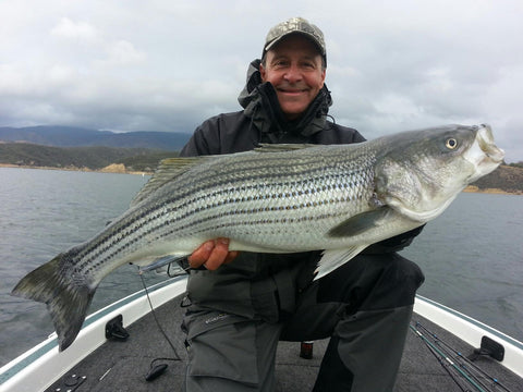 Castaic Lake Striper Bass